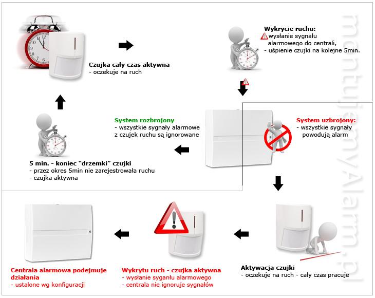 Zasada działania czujki ruchu PIR w systemie OASiS